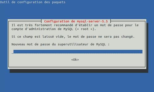 motdepasse-superutilisateur-mysql