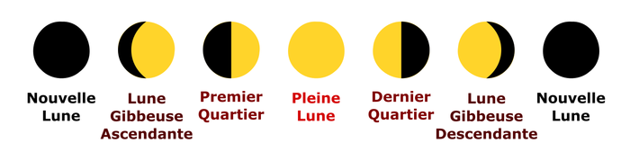 lune_phases