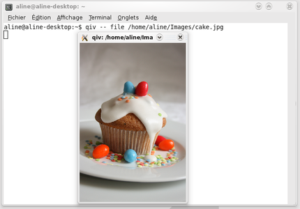 qiv_openfile